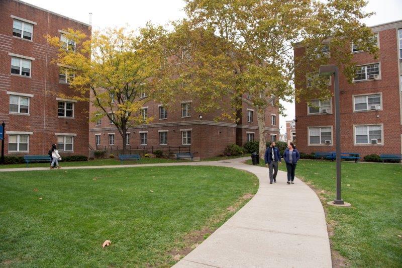 אוניברסיטה ניו יורק